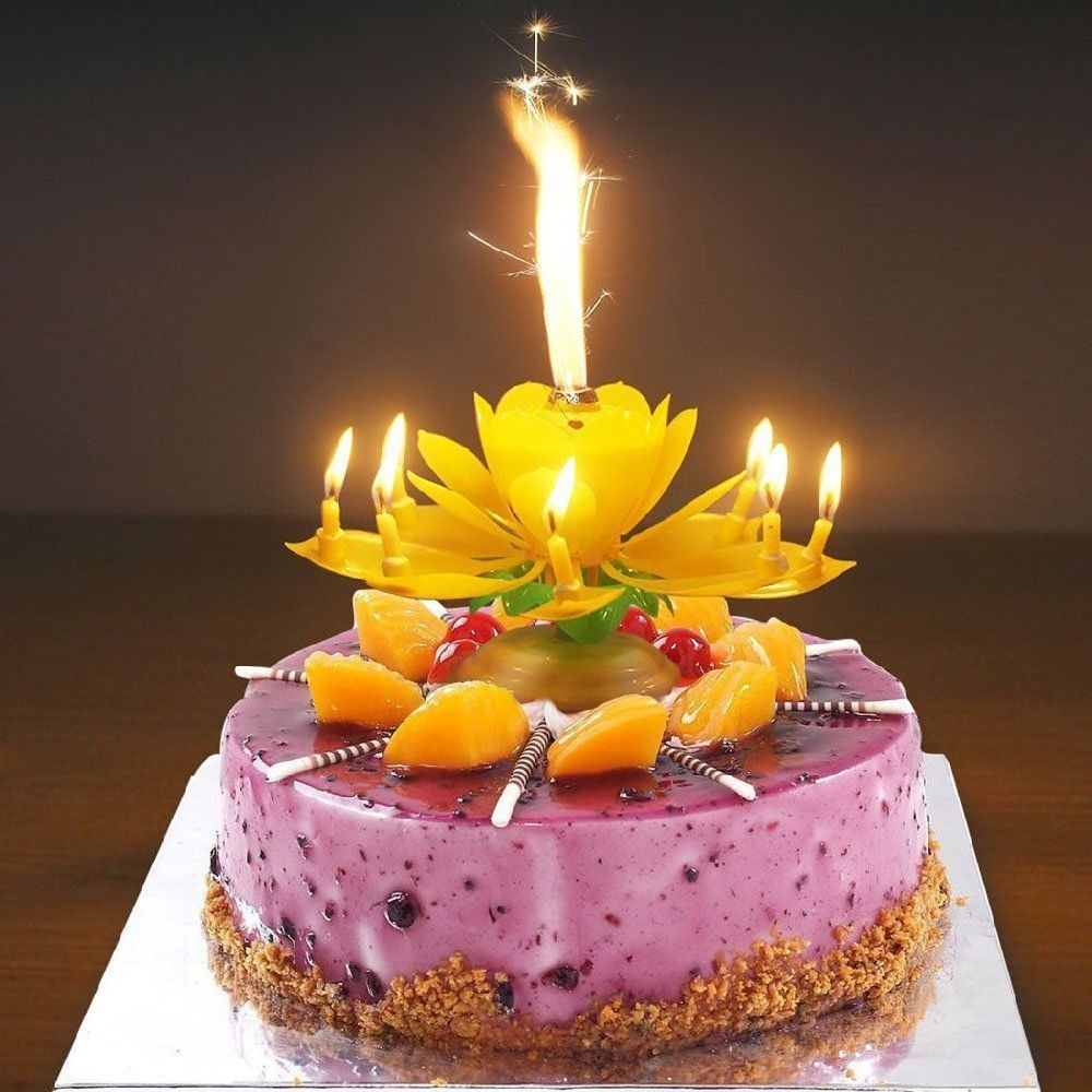 Petals Rotate With Flameless LED Lights Up And Play Happy Birthday To You Automatically Will Be The Hit Of Any Party