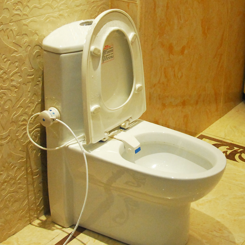 Shop For Toilet Seat Bidet Luxurious And Hygienic Eco