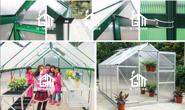 Shop for G-more DIY Small Polycarbonate Garden Greenhouse