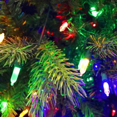 morning star 9 foot dunhill fir tree christmas tree with 1000 led lights 3774 tips - Christmas Tree With Led Lights