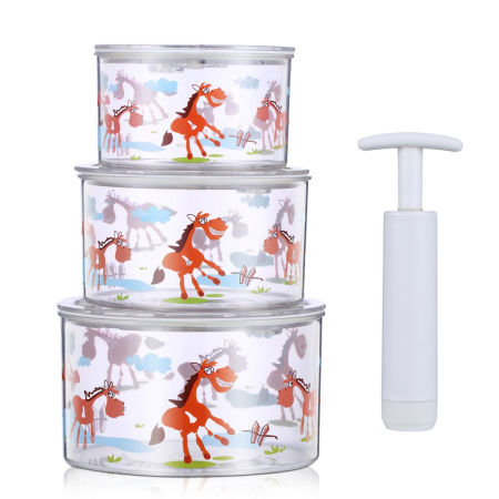 Shop for Vacuum Sealing Food Container Preservative Box Set 4 Pieces