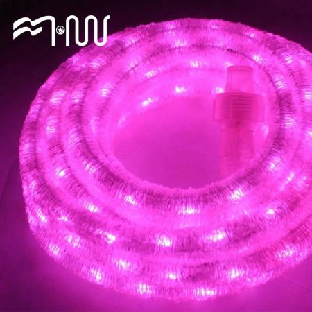 Shop for rgb dimmable rope lights waterproof 8 modestimer fairy rgb dimmable rope lights waterproof 8 modestimer fairy lights for garden aloadofball Gallery
