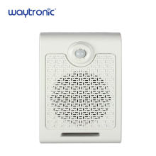 10W High Power Wall Mount Motion Sensor SD Card Audio Broadcasting Amplifier for Shopping Mall Security Alarm