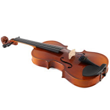 Aileen Solid Tonewood Student Violin Outfit with Case, Rosin, Shoulder Rest, Fingerboard Sticker (4/4)