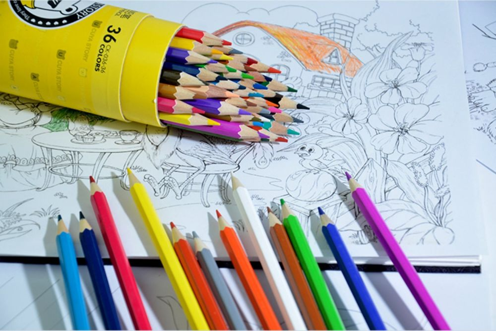 Shop For Zerlar Pencil Drawings 36 Colored Pencils Secret Garden Adult Coloring Books At Wholesale Price On Crov