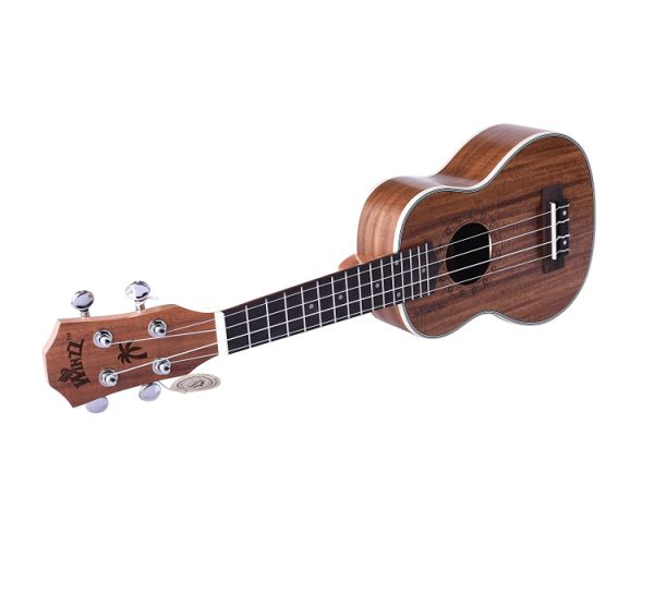 WINZZ 21'' Moonlight Series Soprano Ukulele with Aquila Strings, All Starter Kit Included