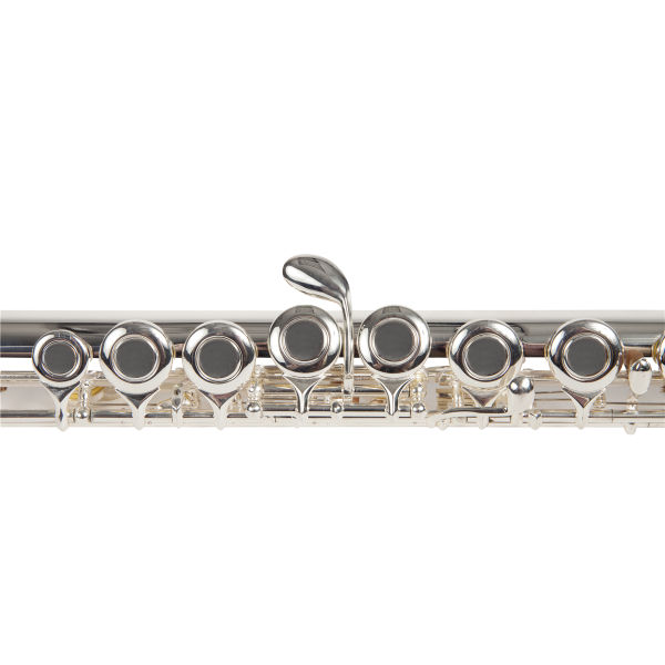 Aileen Lexington Advanced Silver Plated C-Key Closed Hole Flute with Full Accessories and Maintenance Kit