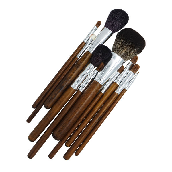 Professional Brush Set at Affordable Price for Starter